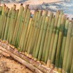 Bepanok Ajan Dalam Kebersamaan, Meriahkan HUT Kota Sanggau 403