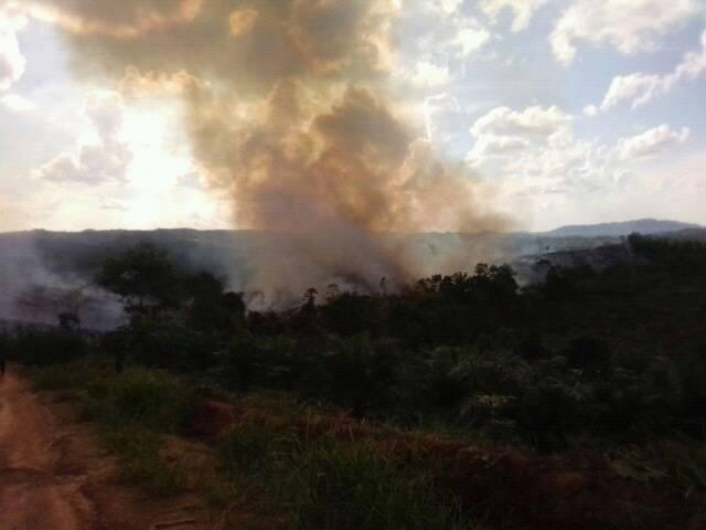 Kebakaran Lahan Di Wilayah Kabupaten Sanggau