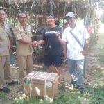 Penyerahan Bantuan Kegiatan Pengembangan Tanaman Kelapa Sawit Rakyat Dinas Perkebunan dan Peternakan Kabupaten Sanggau Tahun Anggaran 2019
