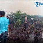 VIDEO: Dandim dan Kapolres Turun Langsung Padamkan 3 Hektar Lahan Yang Terbakar