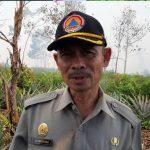 VIDEO: Terkait Kebakaran Lahan di Moton Asam, Ini Penjelasan Penjelasan Kepala BPBD Mempawah