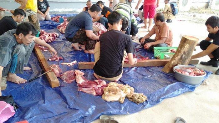 Hari Raya Idul Adha, Sekretariat DPRD Sanggau Potong Dua Ekor Sapi Kurban