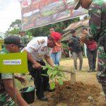 Bupati Sanggau Tanam 10.000 Pohon Di Wilayah Perbatasan