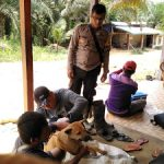 Bhabinkamtibmas Laksanakan Giat Vaksin Rabies Bersama Dinas Peternakan Kecamatan Meliau