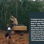 Dugaan Pembalakan Liar di Meliau, WALHI Desak Pihak Terkait Usut Tuntas