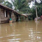 Banjir Landa Dusun Lubuk Benuang Sanggau, Ketinggian Air Sepinggang Orang Dewasa