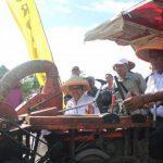 Bupati Sanggau Laksanakan Panen Raya Padi Poktan Lestari