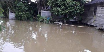 Kondisi Terkini Banjir yang Landa Kecamatan Noyan Sanggau