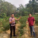 Brigpol Tatak Budi cahyono Dalam Melaksanakan Patroli Sampaikan Himbauan Waspada Hoax