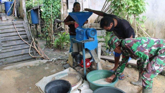 Peduli Pangan, Satgas TMMD Kodim Sanggau Bantu Warga Giling Padi