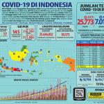 Infografis COVID-19 (30 Mei 2020)