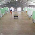 RS Lapangan Jatim Rawat 16 Pasien COVID - Berita Terkini