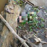 Seorang Pria Ditemukan Meninggal Dunia di Sungai Kapuas
