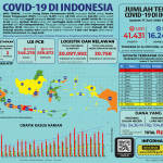 Infografis COVID-19 (17 Juni 2020)