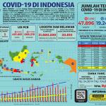 Infografis COVID-19 (23 Juni 2020)