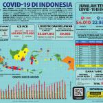 Infografis COVID-19 (28 Juni 2020)