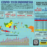 Infografis COVID-19 (29 Juni 2020)
