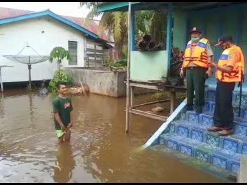 Tinjau Daerah Rawan Banjir di Tepian Kapuas, BPBD Terjunkan Tiga Tim