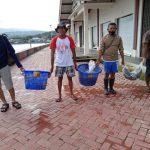 Ratusan Ikan Dari Ambon Diterbangkan ke Jakarta untuk Pasien COVID-19 - Berita Terkini
