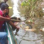 Sungaiku Bersih, Airku Jernih – Dinas Lingkungan Hidup