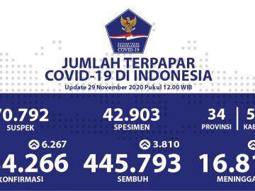 Kesembuhan COVID-19 Terus Bertambah Menjadi 445.793 Orang - Berita Terkini