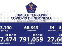 Pasien Sembuh Terus Meningkat Menjadi 9.912 Orang Per Hari - Berita Terkini