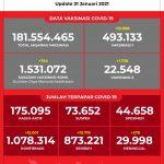 Data Vaksinasi COVID-19 (Update per 31 Januari 2021)