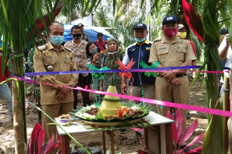 Mengawali Tahun 2021, Disbunnak Menghadiri Launching Tumbang Chipping Program PSR di KUD Kapetha