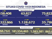 Pasien Sembuh Terus Meningkat Menjadi 1.128.672 Orang - Berita Terkini