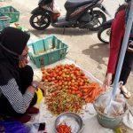 Rp 110 Ribu Sekilo Harga Cabai Rawit di Sanggau