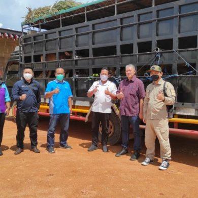 Disbunnak Sanggau Melakukan Pemeriksaan Sapi Asal Bali Pengadaan Bibit Ternak Kabupaten Sanggau Tahun Anggaran 2021